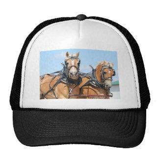 Belgian Horses Cap