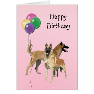 Belgian Malinois, Birthday Balloons Card