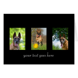 Belgian Malinois dog blank custom text note card
