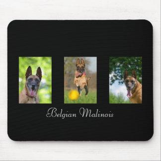 Belgian Malinois dog lovers custom mousepad