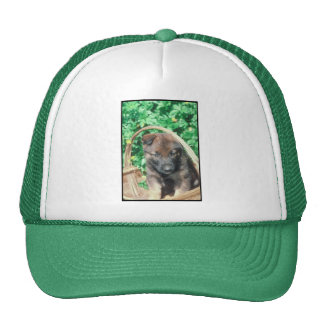 Belgian Malinois Mesh Hat