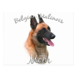 Belgian Malinois Mom 2 Postcard
