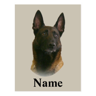 belgian malinois name postcard
