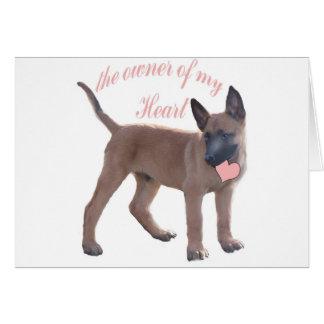 Belgian Malinois Puppy Greeting Card