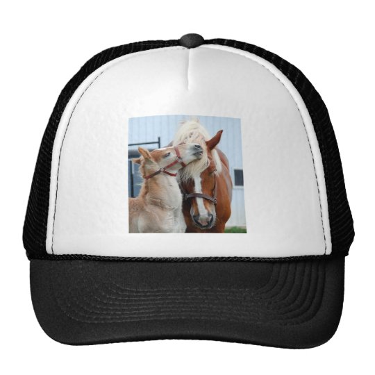 belgian Mare and Filly Cap