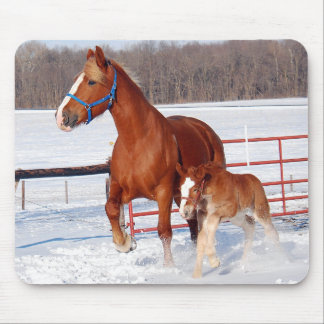 Belgian Mare and Filly Mousepads