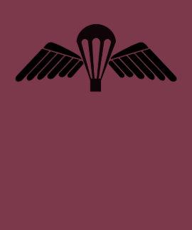 Belgian Parawing, Jumpwing Belgium T Shirts