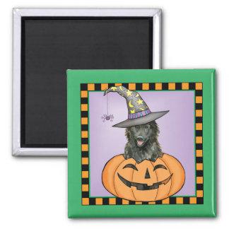 Belgian Sheepdog Halloween Square Magnet