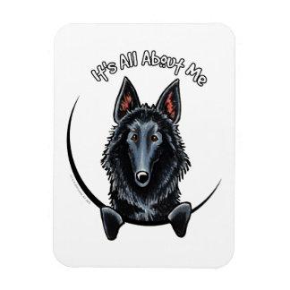 Belgian Sheepdog IAAM Flexible Magnet
