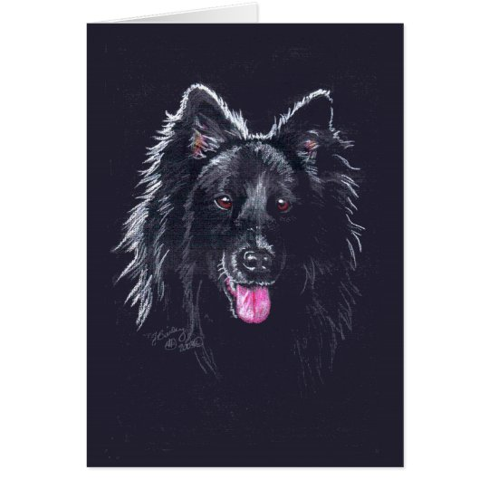 Belgian Sheepdog on Black Card