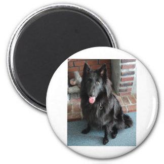 "Belgian Shepherd aka ""The Black Wolf"" 6 Cm Round Magnet"