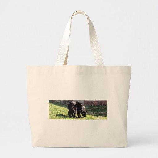 Belgian Shepherd Canvas Bag