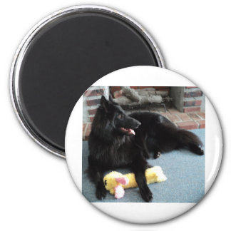 Belgian Shepherd by the Fireplace 6 Cm Round Magnet