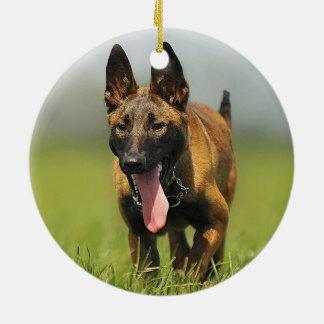 Belgian Shepherd Dog Round Ceramic Decoration