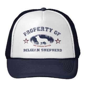 Belgian Shepherd Hats