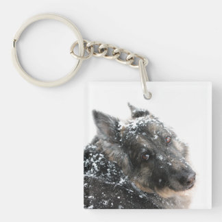 Belgian Shepherd in Snow Single-Sided Square Acrylic Key Ring