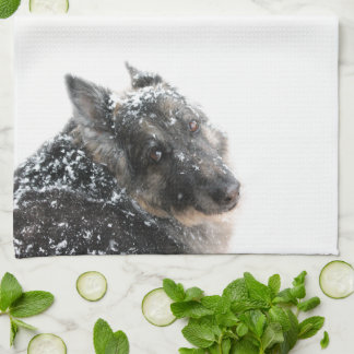 Belgian Shepherd in Snow Tea Towel