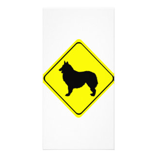 Belgian Shepherd Warning Sign Love Dogs Picture Card