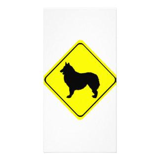 Belgian Shepherd Warning Sign Love Dogs Picture Card