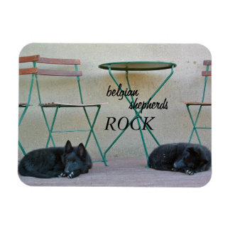 Belgian Shepherds Rock Magnet