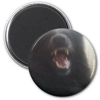 "Belgian Shepherd's Teeth aka ""The Black Wolf"" 6 Cm Round Magnet"