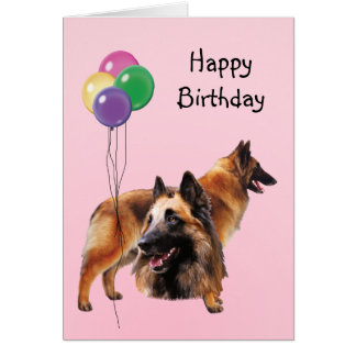 Belgian Tervuren, Birthday Balloons Greeting Card