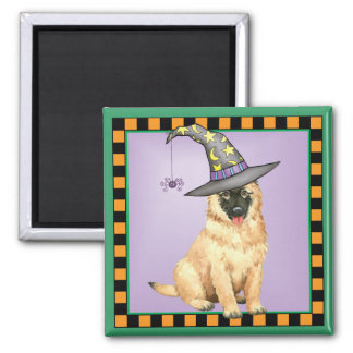 Belgian Tervuren Witch Square Magnet