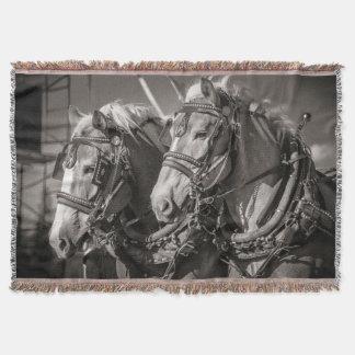 Belgium draught horses throw blanket