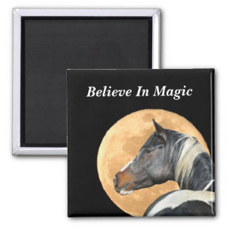 Believe in Magic Magnet with paint horse and full