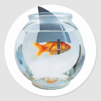 Believe in yourself fish classic round sticker