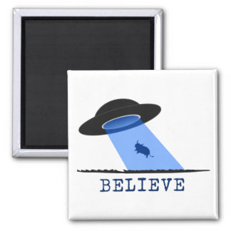 Believe (UFO beaming up cow) Magnets