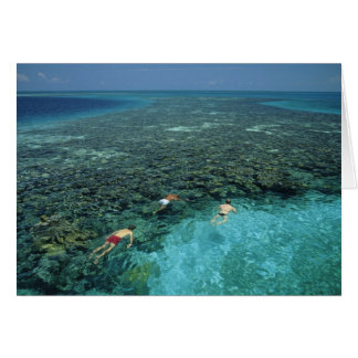 Belize, Barrier Reef, Lighthouse Reef, Blue Card