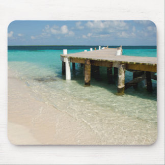 Belize, Caribbean Sea, Goff Caye. A Small Island Mouse Mat