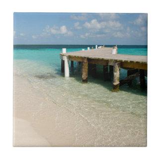 Belize, Caribbean Sea, Goff Caye. A Small Island Tile