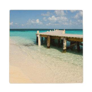 Belize, Caribbean Sea, Goff Caye. A Small Island Wood Coaster