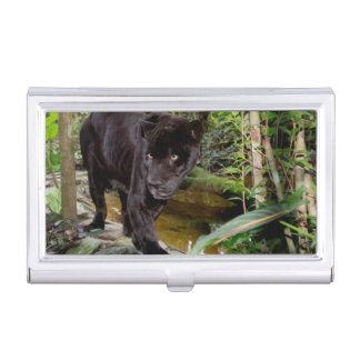 Belize City Zoo. Black panther Business Card Holders