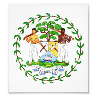 Belize Coat Of Arms Photo Print