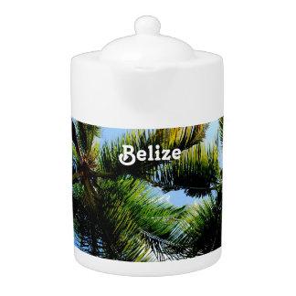 Belize Palm Trees