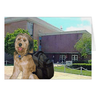 Bella Goes To College Greeting Cards