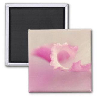 Bella pink one fridge magnets