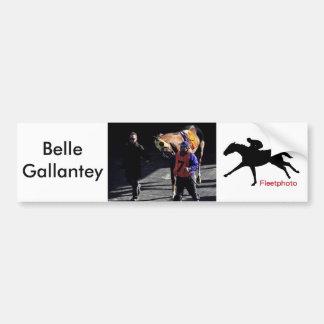 Belle Gallantey on New Year's Day Bumper Sticker