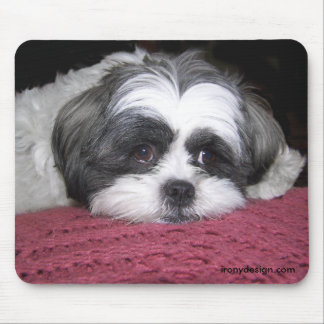 Belle The Shih Tzu Mouse Mat