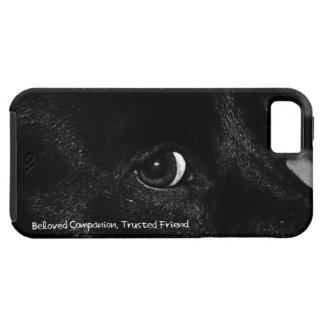 Beloved Companion, Trusted Friend iPhone 5 Case