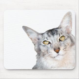 Beloved Feline Family Member Mouse Pad