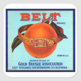 Belt Brand California Oranges Square Sticker