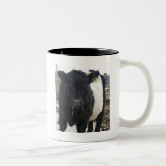Belted Galloway Cow Eating Hay Mugs