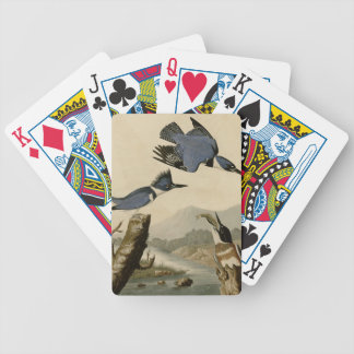 Belted Kingfisher Poker Deck