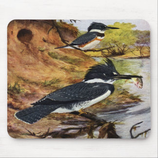 Belted Kingfishers and Their Nest Tunnel Mouse Pad