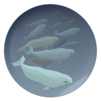 Beluga Plate Beluga Whale Dishes Whale Gifts Decor