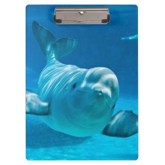 Beluga Whale Clipboard